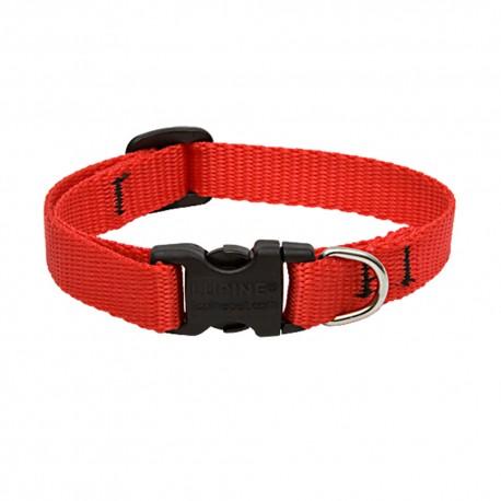 """Collar 1/2"""" Red - Envío Gratis"""