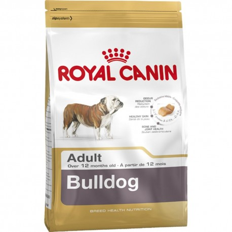 Bulldog Adult - Envío Gratis
