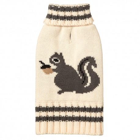 Suéter Squirrel - Envío Gratis