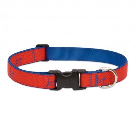 "Collar 1"" Derby Red"