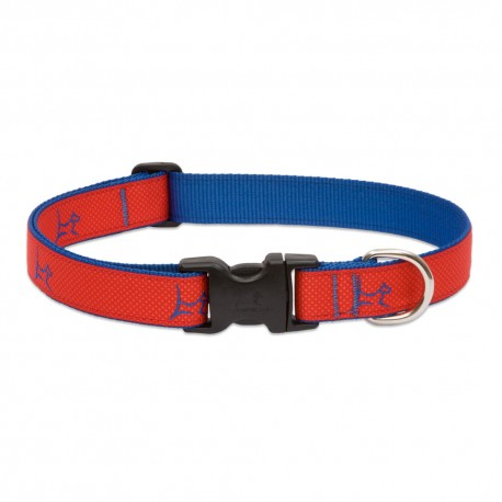 "Collar 1"" Derby Red - Envío Gratis"