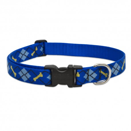 """Collar 1"""" Dapper Dog - Envío Gratis"""
