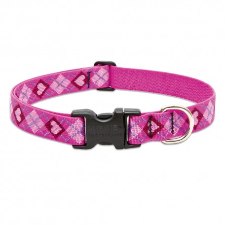 "Collar 1"" Puppy Love - Envío Gratis"