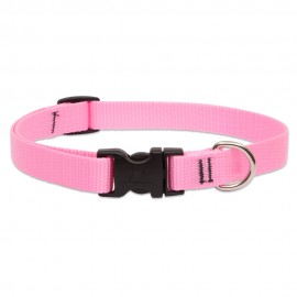 "Collar 3/4"" Pink"