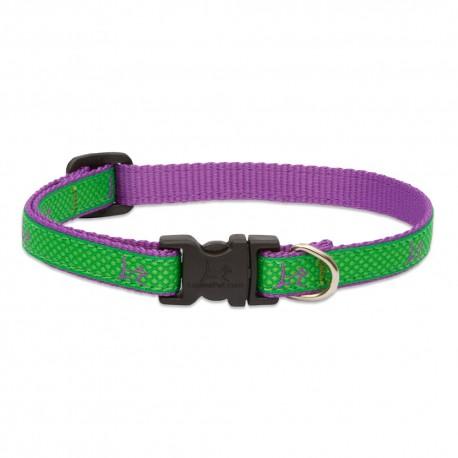 """Collar 1/2"""" Augusta Green - Envío Gratis"""