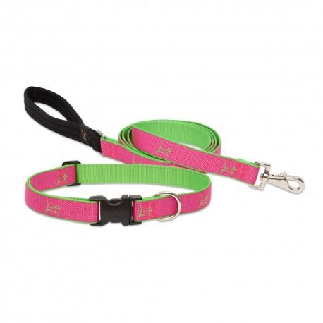 """Collar 1/2"""" Bermuda Pink - Envío Gratis"""