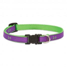 "Collar 1/2"" Hampton Purple"