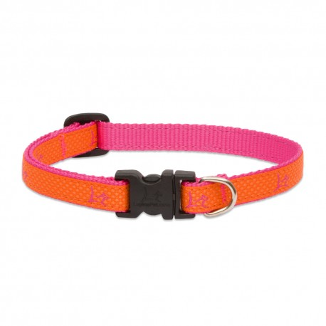 """Collar 1/2"""" Sunset Orange - Envío Gratis"""