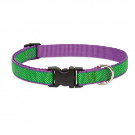 """Collar 3/4"""" Augusta Green - Envío Gratis"""