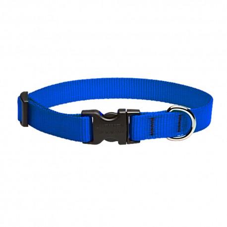 """Collar 3/4"""" Blue - Envío Gratis"""