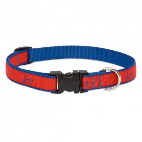 "Collar 3/4"" Derby Red - Envío Gratis"