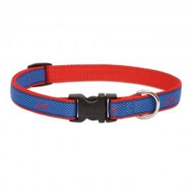 "Collar 3/4"" Newport Blue"