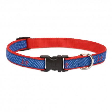 "Collar 3/4"" Newport Blue - Envío Gratis"