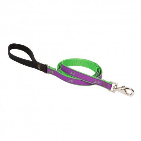 """Correa 3/4"""" Hampton Purple - Envío Gratis"""