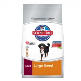 Adult Large Breed - Envío Gratis
