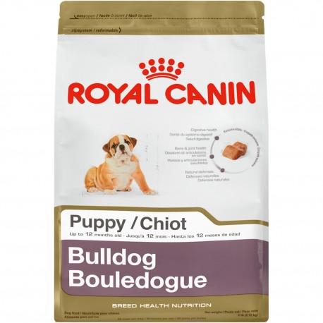 Bulldog Puppy - Envío Gratis
