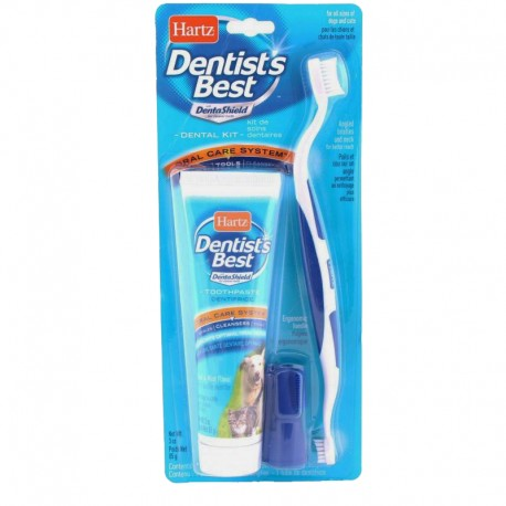 Kit Dental Oral Care - Envío Gratis