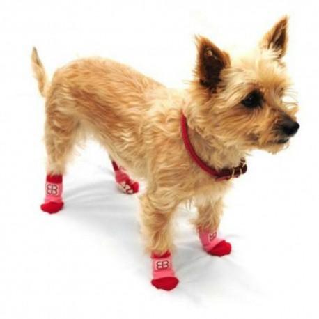 Calcetines para Perro Traction Control Socks Mediano - Envío Gratis