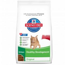 Kitten Healthy Development