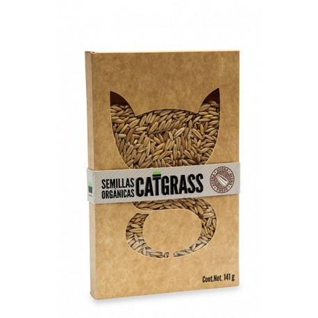 Semillas Catgrass Orgánico - Envío Gratis