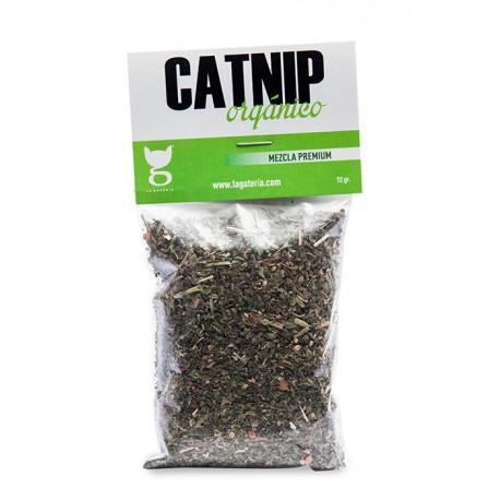 Catnip Orgánico - Envío Gratis