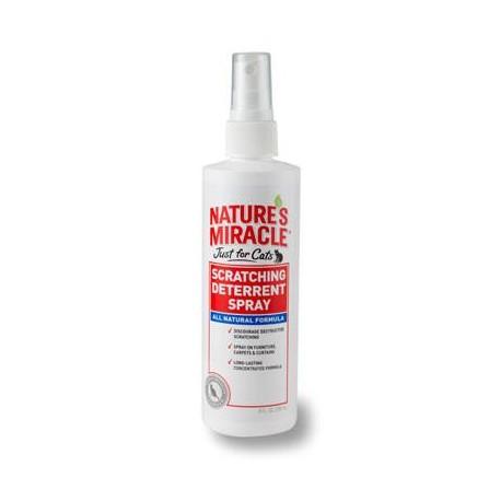 Spray Anti Rasguños - Envío Gratis
