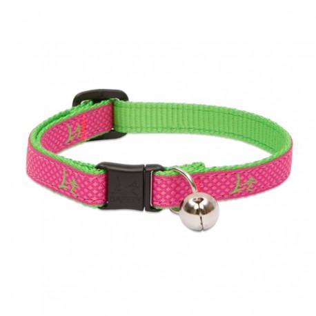 """Collar con Cascabel 1/2"""" Bermuda Pink - Envío Gratis"""