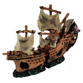 Naufragio Pirata 2