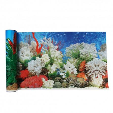 Respaldo Decorativo: Coral - Envío Gratis