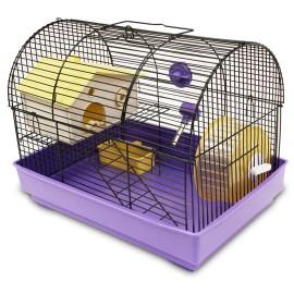 Jaula Daytona para Hamster - Envío Gratis