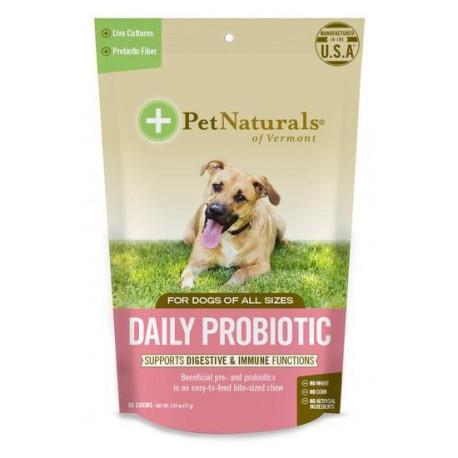 Daily Probiotic Perro - Envío Gratis